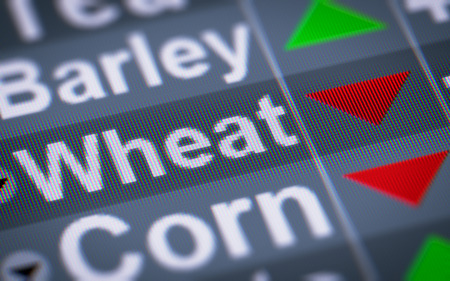 Wheat index of the stock market. Down.