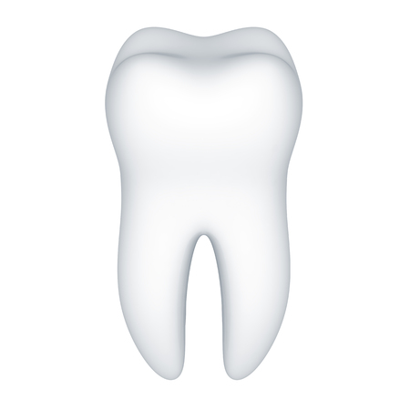 Tooth on a white background.