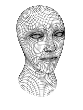 3D grid of a head. 3D Illustration. 版權商用圖片