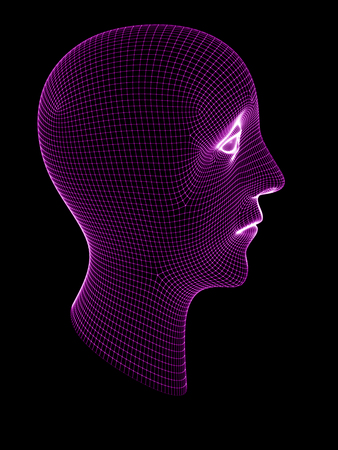 3D grid of a head. 3D Illustration. Stock Photo