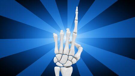 Skeletal hand in blue background. 3D Illustration.