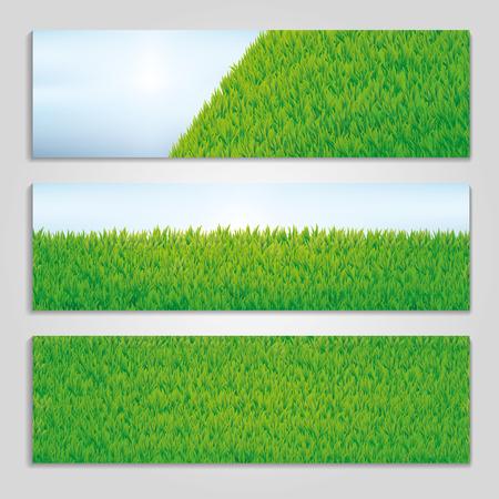 Green grass sammer banner background
