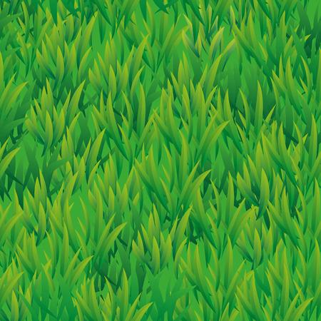 Summer green grass texture. Summer pattern background. Summer . Grass texture background. Grass seamless pattern  for design. Green grass seamless pattern web, card, banner, spring, summer 向量圖像