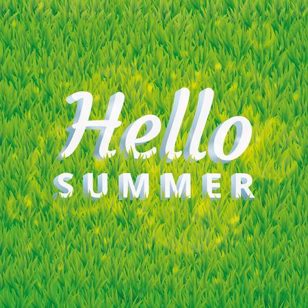 grass texture: Hello summer green grass texture. Summer hello pattern background. Grass texture background. Grass seamless pattern for  web, card, vip exclusive certificate, gift luxury voucher.