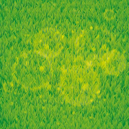 mow: Summer green grass texture. Summer pattern background. Summer . Grass texture background. Grass seamless pattern for design. Green grass seamless pattern web, card, spring, summer Illustration