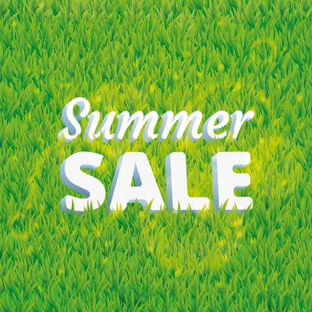 greenery: Sale summer green grass texture. Stock Photo