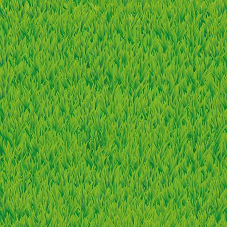 tiles floor: Summer green grass texture Stock Photo