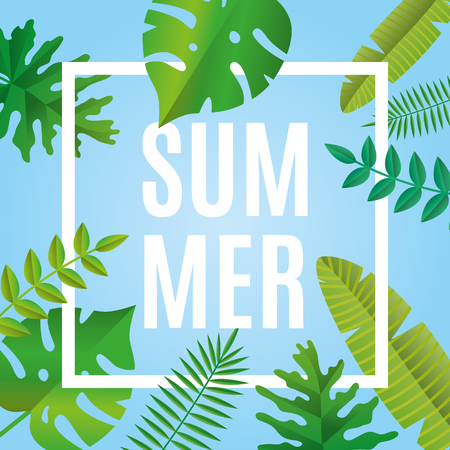 Tropical summer time on white paper background.