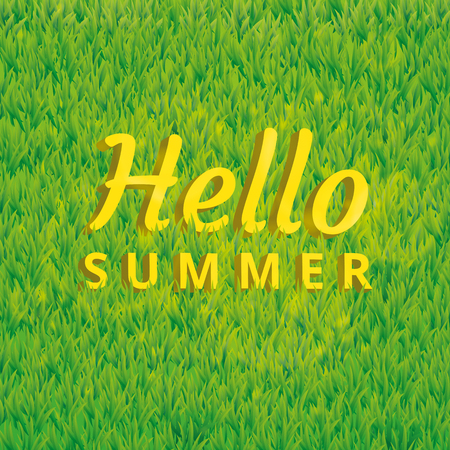 Hello summer green grass texture. Light lawn background. Seamless pattern vector for Banners, logo, web, card, vip exclusive certificate, gift luxury voucher, sale, welcome.