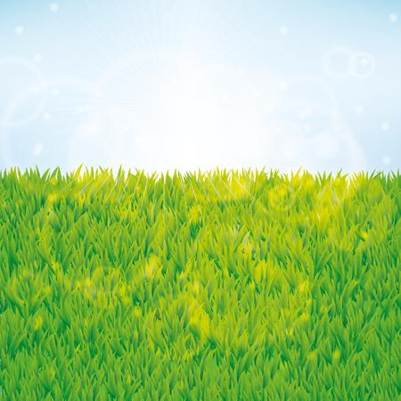 여름 녹색 잔디 배경입니다. 원활한 패턴 벡터 웹, 카드, 배너, 봄, 판매, 플라이어, 배너, 로고, 웹, vip 독점적 인 인증서, 선물 럭셔리 쿠폰에 대 한 배 일러스트