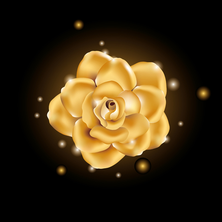 Gold shine flower Stock Photo