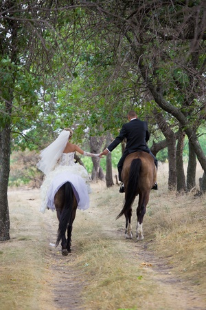 Bride and groom in forest on the horses photo