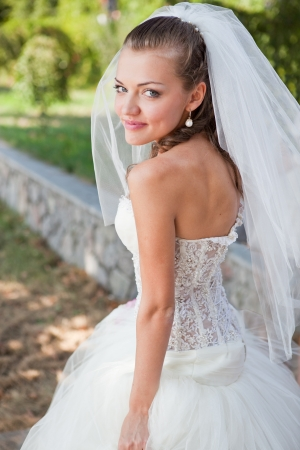 Beautiful elegance bride with beauty wedding coiffure Stock Photo