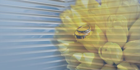 unity small flower: two wedding golden rings and  yellow tulips on the blue background