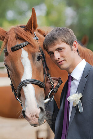 brown horse: groom with brown horse