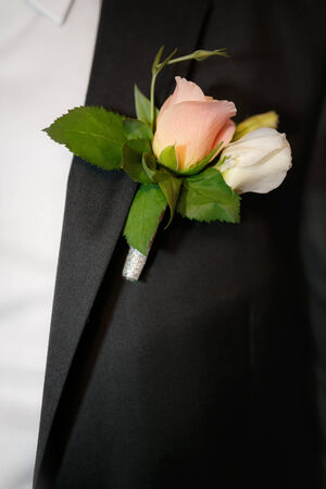 buttonhole: Close up a buttonhole of the groom from beige roses Stock Photo