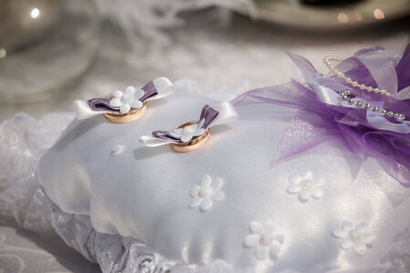 twosome: wedding rings lie on a small pillow