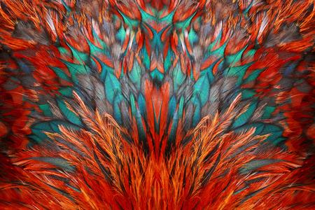 Bright brown feather group of some bird Standard-Bild