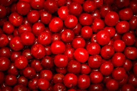 fondo rojo: dulce de color rojo cereza de fondo  Foto de archivo