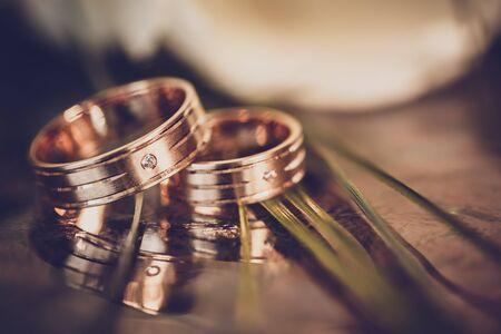 anillos boda: concepto de la boda - anillos de boda y tulipanes blancos Foto de archivo