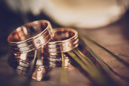 wedding rings: wedding concept - wedding rings and white tulips