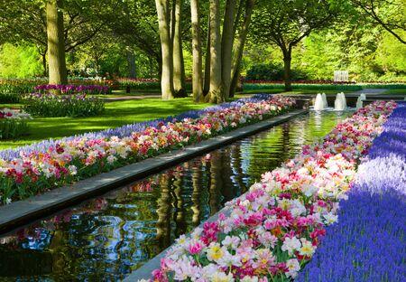 keukenhof: Keukenhof - Largest flower garden in Europe - Holland