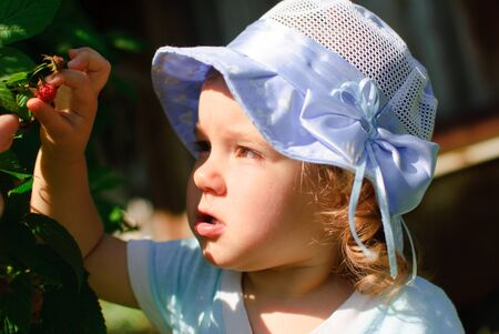 the child eats berries in a garden Stock Photo