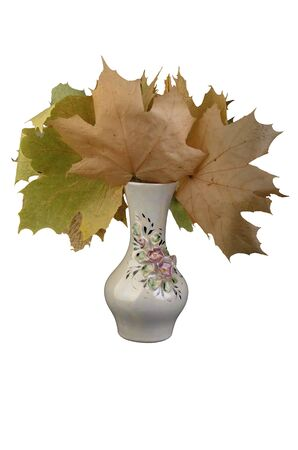 porcelain vase with leaves on a white background
