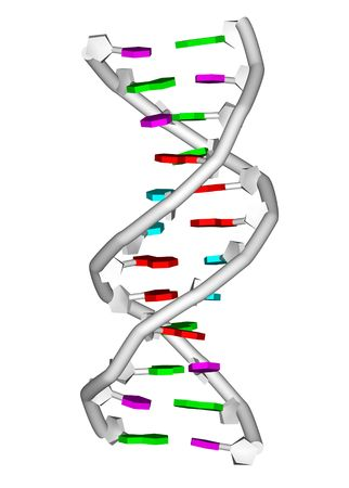 rendering of a DNA double helix molecule photo