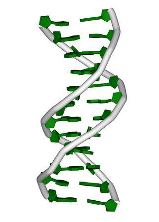 rendering of a DNA double helix molecule Reklamní fotografie - 319173