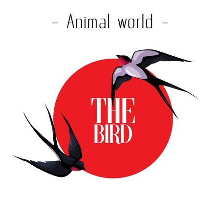 Animal World The Bird Martin Red Sun Background Vector Image Illustration