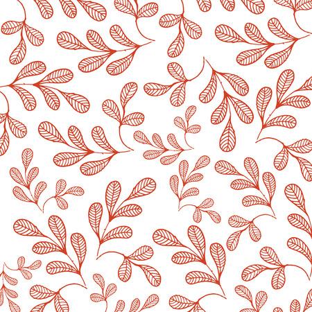 Moringa White Background Vector Image Illustration