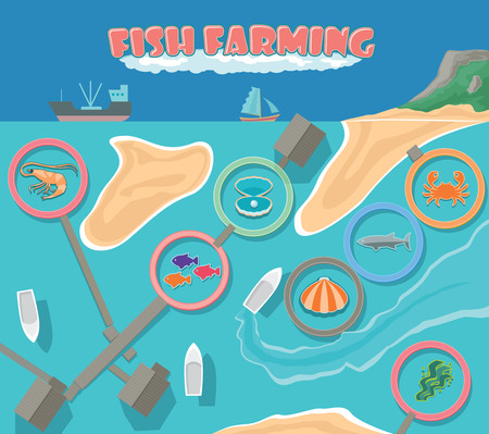 Aerial view of fish farm infrastructure, cultivation seafood and aquaculture in the tropical climate.
