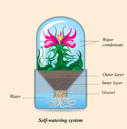Simple design of Self-watering system for potted plant. Cultivation a flower in an isolated environment, infographics cutout scheme, vector illustration Illusztráció