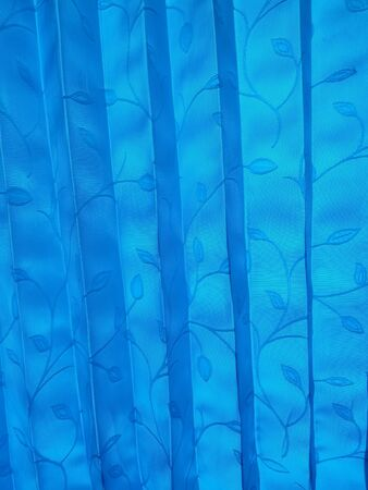 backdrop: blue curtain
