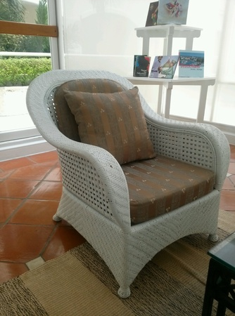 pillows: a chair in living room
