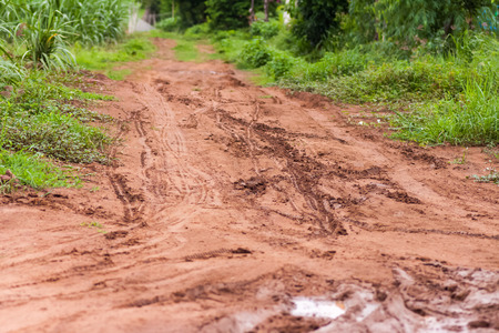 muddy: muddy road with tire trail