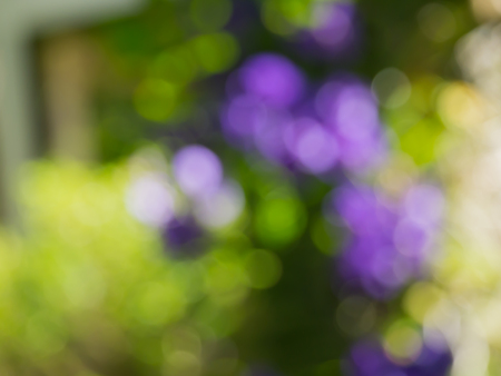 vj: Bokeh background blur Stock Photo