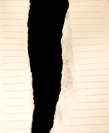 paper texture: Paper texture. paper sheet.