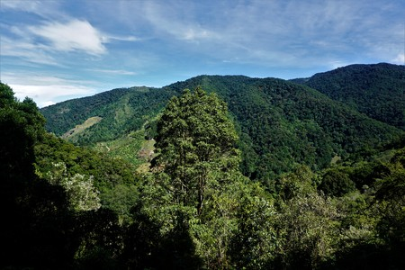 Beautiful view on the hills surrounding San Gerardo de Dota, Costa Rica