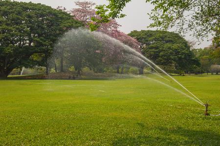 sprinkle system: The sprinkler in the park. Stock Photo