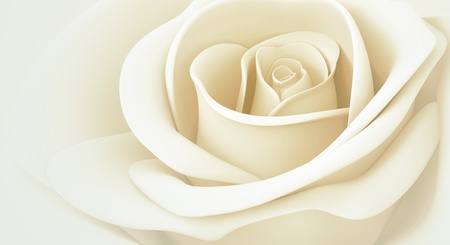 white rose pastel colors isolated 3d background