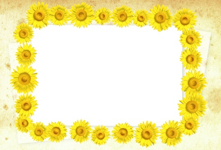 3D sunflower frame on background, illustration  illustration