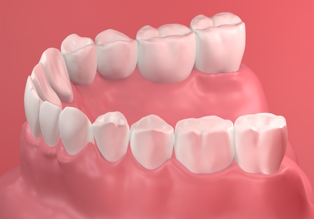 dentin: 3D Teeth close up on background Stock Photo