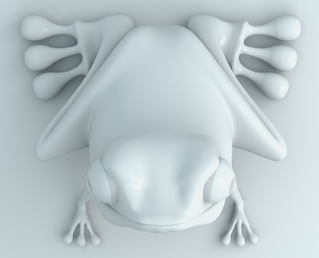white frog top view on white background. Isolated 3d model  photo