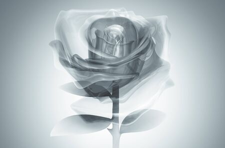 rose glass Gray on background. Isolated 3d model