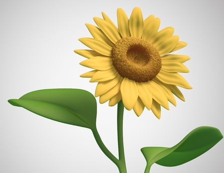 sunflower on white background. Isolated 3d model Stock Photo
