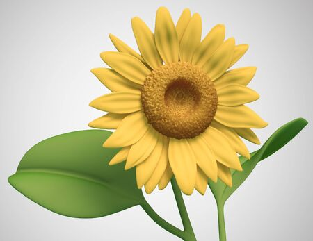 sunflower on white background. Isolated 3d model Stock Photo - 11671613