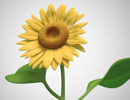 sunflower on white background. Isolated 3d model Stock Photo - 11671608