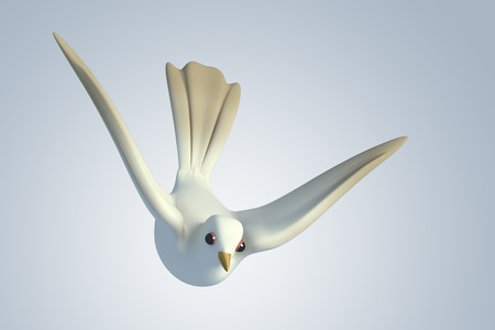 3d dove: white Pigeon dove.model 3D Isolated on blue background. Birds Eye View